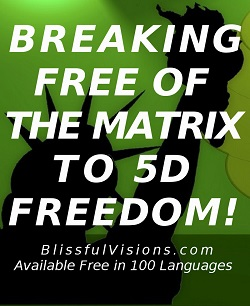 Breaking Free of the Matrix to 5D Freedom! by Dennis B. Shipman